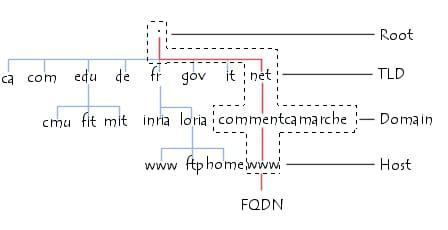 Arborescence du Domain Name System
