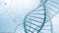 Edição genética faz ratos voltarem a enxergar