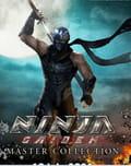 Ninja gaiden master collection pc download
