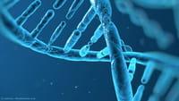 Descobertos 14 transtornos de desenvolvimento