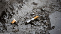 Tabaco causa prejuízo de R$ 56,9 bilhões ao país