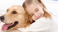 Cachorros diminuem risco cardíaco nos donos