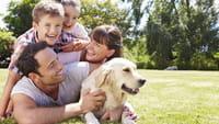 Cães podem se lembrar de ações do dono