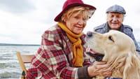 Idosos que andam com cães são mais saudáveis