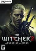Tradução the witcher 2