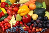 Aquecimento global vai afetar dieta das pessoas