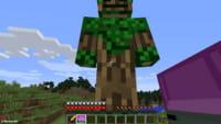 Minecraft ganha Hora de Aventura